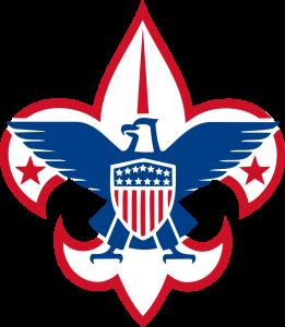 BSA logo 1