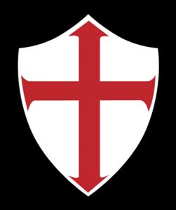 TSG logo 6